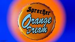 Orange Dream (disgruntledbaker1) Tags: disgruntledbaker macromondays orangeandblue