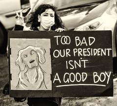 good dog/bad dog (Ripley's fish planet) Tags: antitrump lakeoswegooregon march42017protests doglover fbi nsa trumptwitter