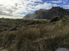 2017_03_NewZealand_iPhone_9 (Lightning_Todd) Tags: photostream newzealand karekarebeach beach hike tramping