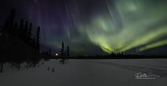 1369_Panorama1 (Ed Boudreau) Tags: alaska northernlights auroraborealis nightphotography nightsky stars aurora winter winterscene winterscape landscape alaskalandscape landscapephotography auroratrapperscreek petersvillerd auroracolors