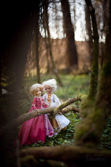 lost in the woods (koroa) Tags: bjd doll bluefairy may tan white twins rococo