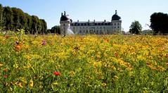 Chateau de Valançay (claude 22) Tags: château valençay indre maisondestampes talleyrand castle loire castillo france parc fleurs flowers châteaux burgen castles castelli