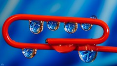 Blue Red (Yasmine Hens +4 800 000 thx❀) Tags: blue red abstract trombone macro 7dwf hensyasmine color