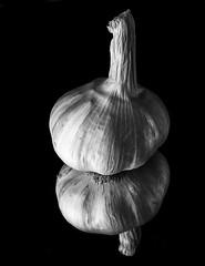 Reflecting On The Leaning Tower of Garlic In Black And White (Bill Gracey 15 Million Views) Tags: garlic clove blackbackground blackandwhite noiretblanc blancoynegro offcameraflash lastoliteezbox softbox shapes shadows sidelighting yongnuorf603n yongnuo tabletopphotography mirror reflection