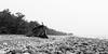 Schiffsbruch (laubencrew) Tags: blackandwhite nebel sweden schweden rainy sw regen mystisch öland wrack schwarzweis steinstrand trollskogen swiks