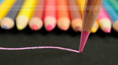Pink & Black (disgruntledbaker1) Tags: pink school macro pencils point back nikon 60mm monday f11 d90 disgruntledbaker1