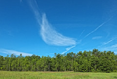 A Swoosh (cjh44) Tags: sky ontario field clouds kingston dogpark