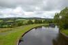 Pendle from Barden Marina (Laineyb93) Tags: macro reed nature water closeup canal nikon zoom dragonfly burnley greatoutdoors naturalenvironment 200mmlens
