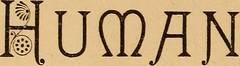 Anglų lietuvių žodynas. Žodis systemic reiškia ,a sisteminis lietuviškai.