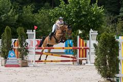 DSC04655_s (AndiP66) Tags: horse macro sports sport schweiz switzerland jumping sony july sp di if juli alpha tamron concours pferd equestrian f28 solothurn ld horsejumping 70200mm wettbewerb 2014 springen kantonsolothurn balsthal springreiten cantonsolothurn andreaspeters pferdespringen 77m2 a77ii ilca77m2 77ii 77markii slta77ii