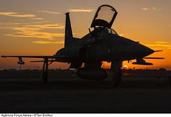 Northrop F-5EM da Força Aérea Brasileira (sunset) (Força Aérea Brasileira - Página Oficial) Tags: sunset brasil contraluz fighter silhueta northrop caça forcaaereabrasileira brazilianairforce f5em fotoeniltonkirchhof 131112eni8050ceniltonkirchhof