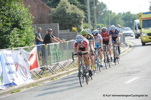 Geel Oosterlo  (317)