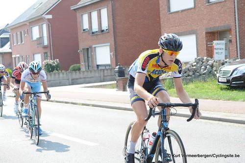 Geel Oosterlo  (66)