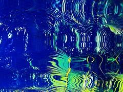 le jardin d'eau (saudades1000) Tags: blue abstract reflection green folhas pool leaves azul piscina tropical vegetation tropics piscine greenblue naturalabstract azurre abstratonatural