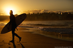 Sol surfer (Heatwaves Australia) Tags: morning light beach bondi silhouette sunrise golden surfer sydney australia aaa benbuckler