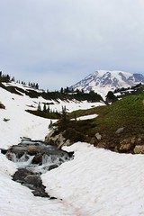 Mount Rainier and flowing water (daveynin) Tags: mountain snow volcano cloudy nps trail mountrainier deaftalent deafoutsidetalent deafoutdoortalent