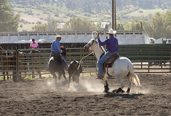 Team Roping 2 (prwreden_98) Tags: cowboys oregon rodeo backside behind rearview cowgirls laborday panhandle halfway hellscanyon bakercofair bakercountyfairandpanhandlerodeoinhalfwayoregon