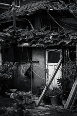 He never came back (Photography by Michael Shaw) Tags: old blackandwhite bw abandoned 50mm oldhouse seoul blackandwhitephotography