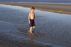 dunebluewlk (babyfella2007) Tags: ocean park boy sunset shadow sea summer jason tree sc nature water pool grass silhouette carson walking outside island harbor sand day child natural state grant labor south tide father low dune country hunting salt young son palm frond southern maritime taylor carolina beaufort tidal oat lowcountry ridgeland batesburg
