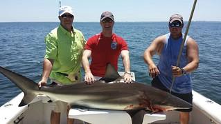 Shark-fishing-Ameila-Island-FL