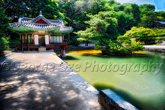 Buyongjeong Pavilion with a Pond, Huwon Area, Secret Garden, Changdeokgung Palace Complex, Seoul, South Korea (George Oze) Tags: travel summer pool horizontal architecture garden landscape outdoors pond colorful asia scenic nobody historic seoul kr southkorea secretgarden royalpalace changdeokgung asianarchitecture unescoworldculturalheritagesite koreanpeninsula buyeongjipond changdeokpalac