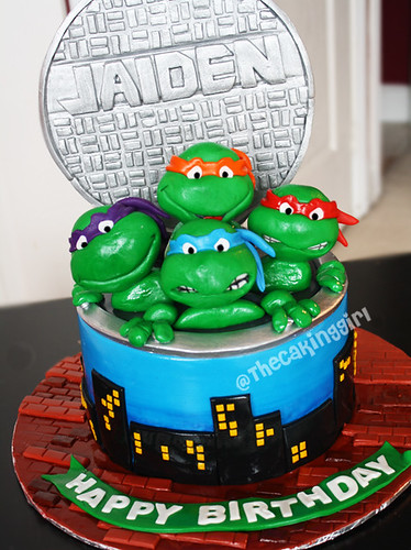 Admirable Tmnt Cake A Photo On Flickriver Funny Birthday Cards Online Ioscodamsfinfo