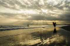 rays (biarritz73) Tags: sunset surf surfer kanagawa shonan  kugenuma