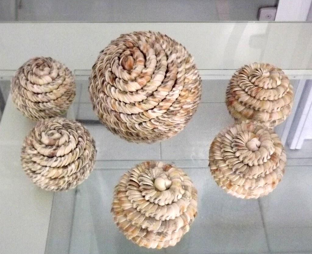 Imagens de #876544 conjunto de bolas de conchinhas para centro (arte vidros) Tags: flores  1024x834 px 2520 Box Banheiro Vila Olimpia