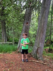IMG_4793 (150hp) Tags: young boy xavier family cute happy forest woods door county wi apple iphone 5c
