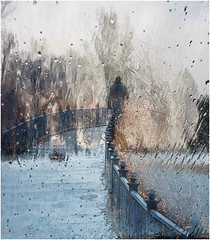 walkin' in the rain (montrealmaggie) Tags: fence hff rain cold winter blur abstract surreal snow