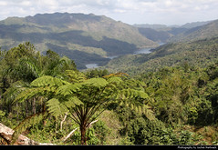 Topes de Collantes NP, Cuba (JH_1982) Tags: topes de collantes np national park parque nacional nationalpark nature landscape scenery scenic foret wood tropics tropical trees river lakes view viewpoint mirador aussicht cuba kuba 古巴キューバ 쿠바 куба क्यूबा كوبا