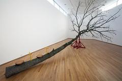시소 SEESAW     Oak tree, Steel.     1200 X 600 X 500 (cm)  472 X 236 X 197 (inch