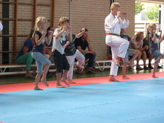 "zomerspelen 2013 karate clinic • <a style=""font-size:0.8em;"" href=""http://www.flickr.com/photos/125345099@N08/14220618478/"" target=""_blank"">View on Flickr</a>"