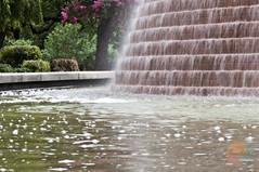 Project 52: Week 25 - Water (Angelia's Photography) Tags: art water fountain nikon university slowshutter waterblur uta arlingtontx project52