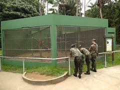 """Les militaires se promène aussi dans le parc • <a style=""""font-size:0.8em;"""" href=""""http://www.flickr.com/photos/113766675@N07/14367898619/"""" target=""""_blank"""">View on Flickr</a>"""