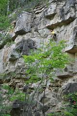 Samara, june, 2014 (LisaTikhonova96) Tags: mountain nature russia mountainclimbing climbing mountaineering samara turism alpinism alpinist