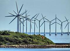 Copenhagen Turbines (saxonfenken) Tags: 6980mill 6980 turbines copenhagen manydenmark island june2014 pregamesweepwinner herowinner gamesweep challengeyou yourockwinner bigmomma favescontestwinner gamex2winner friendlychallenges tcf