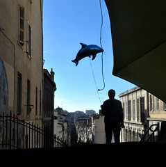 requin flottant (asketoner) Tags: street people france stairs shark marseille dolphin balloon panier