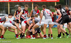 """IMG_5186 (Go to """"Albums"""" for all pics) Tags: club football dolphins frankston bombers essendon vfl"""