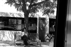 Bajo una acacia/Under an acacia tree (Joe Lomas) Tags: street leica urban blackandwhite bw espaa byn blancoynegro bench real calle spain chica phone candid banco movil bn celular reality streetphoto urbano telefono denia urbanphoto realidad callejero anden robado realphoto fotourbana fotoenlacalle fotoreal photostakenwithaleica leicaphoto