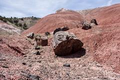Mark 121a (markbyzewski) Tags: arizona painteddesert ugly petrifiedforestnationalpark