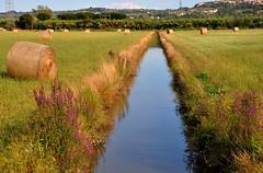 Il grande fossato (fiumeazzurro) Tags: toscana abigfave