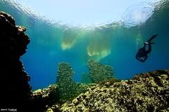_MGA9713 (Gianni Cicalese) Tags: lake underwater wideangle medievale abruzzo freshwater laquila capestrano gransasso parconazionaledelgransasso capodacqua borderfx giannicicalese mulinisommersi