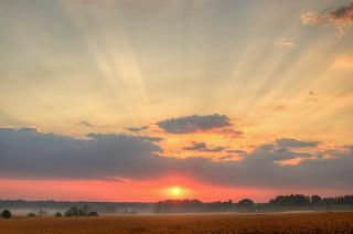Sunrise over misty fields