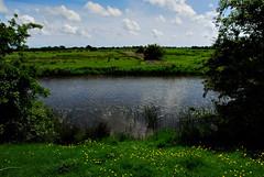 Royal Military Canal (richwat2011) Tags: rural landscape countryside kent nikon view farmland vista d200 romneymarsh 18200mmvr royalmilitarycanal kenardington warehorne