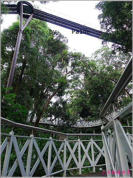 嘉義竹崎公園 (28).JPG