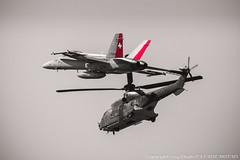 F/A-18 & Super Puma Suisse (Fahrenheitlp (Ludovic PAVADE)) Tags: suisse jubilee hornet boeing puma 50ans payerne superpuma 2014 25ans fa18c meetingaerien 100ans aviondechasse air14 06092014 forcesarienne