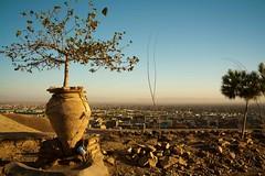 20140914-IMG_3715 (Hassan Reza Khawari) Tags: afghanistan shrine herat   heratcity sayedmokhtar