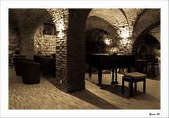 IMG_4653-Edit-Edit (zaom80) Tags: architecture club bricks piano monochromatic vault cellar eos450d sigma1770