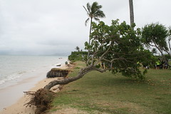 IMG_17885 (mudsharkalex) Tags: hawaii oahu kaneohe kualoaregionalpark kneohe kaneohehi kneohehi